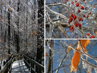 icestorm_4.jpg