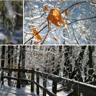 icestorm_5.jpg