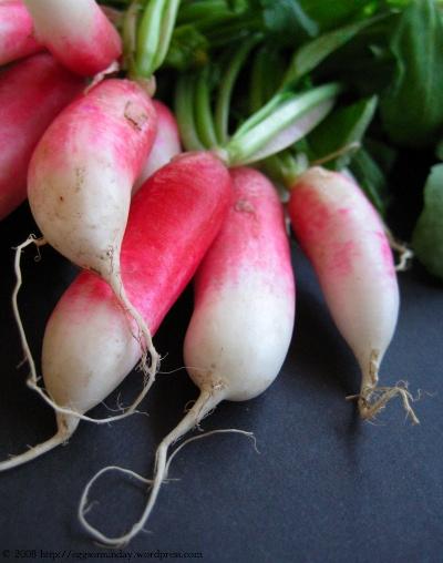springradishes