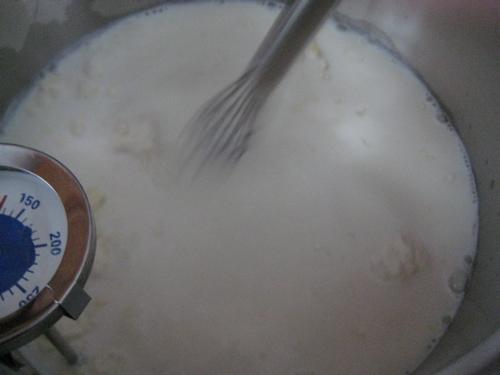 misc_yogurt_13