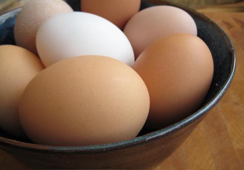 eggs_spring09_4