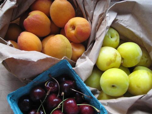 csa_09_w8_fruit