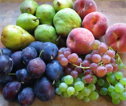 csa_09_w13_fruit