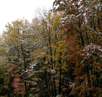 2009_oct_snowfall_4