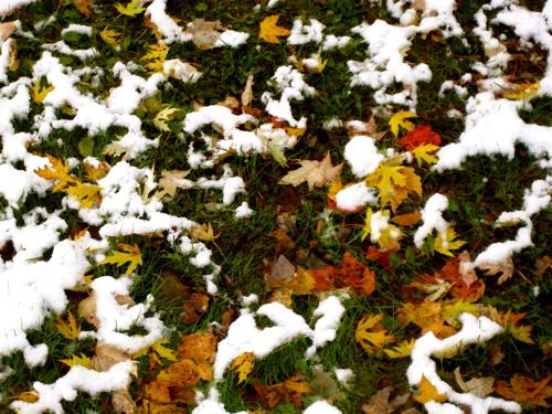 2009_oct_snowfall_6